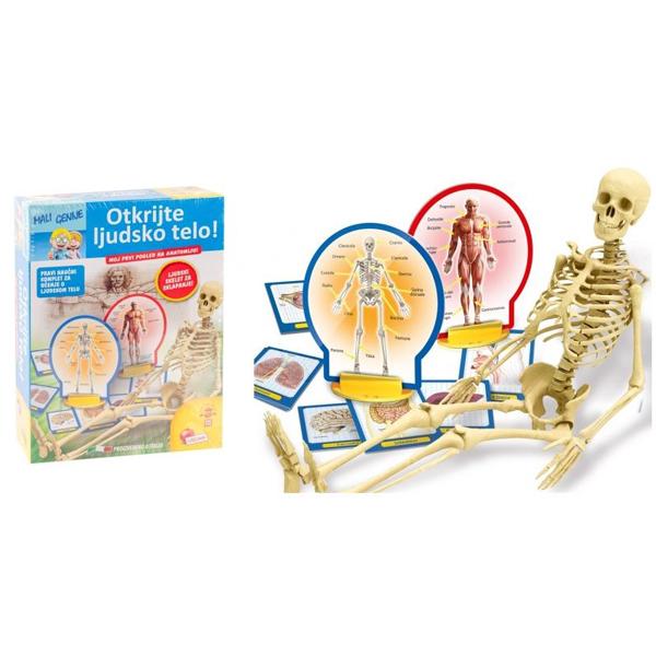 Mali Genije na srpskom Edukativni set Otkrijte ljudsko telo RS63123 - ODDO igračke