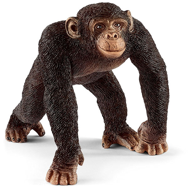 Schleich Šimpanza ženka 14817 - ODDO igračke