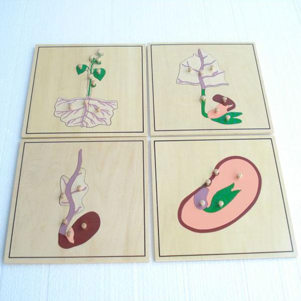 Botaničke puzzle Montesori ATB0199 - ODDO igračke