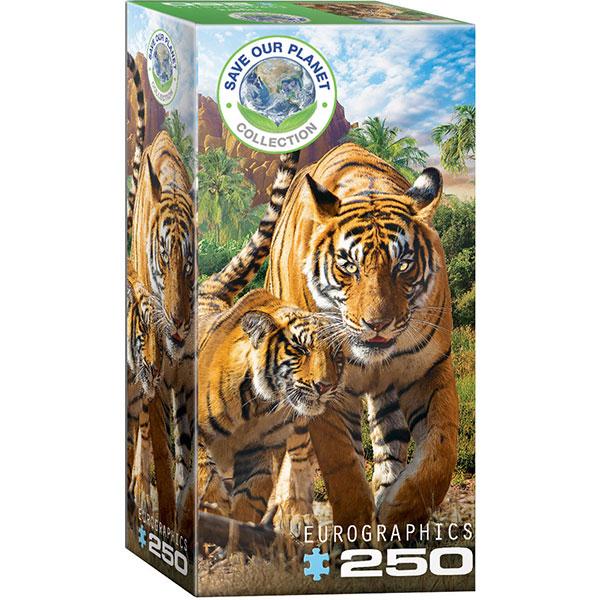 Eurographics Tigers 250-Piece Puzzle 8251-5559 - ODDO igračke