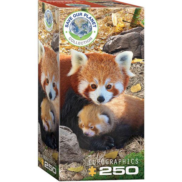 Eurographics Red Pandas250-Piece Puzzle 8251-5557 - ODDO igračke