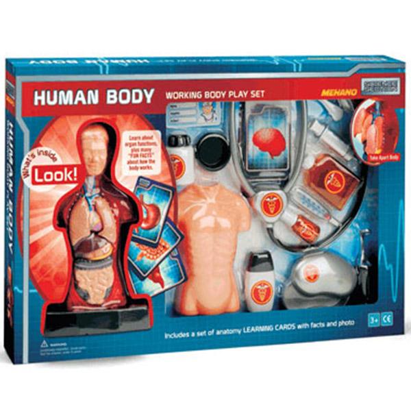 Mehano Set Anatomija Čoveka - Veći E216 - ODDO igračke